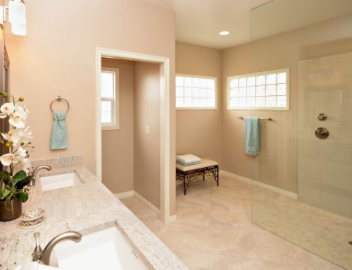 Eagle Accessible Walk or Roll-in Shower